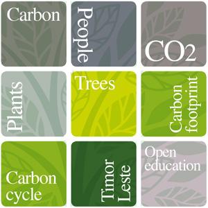 carbon-rubix