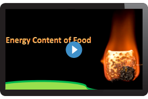 Energy content of food