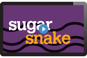 Sugar Snake