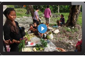 Timorese village